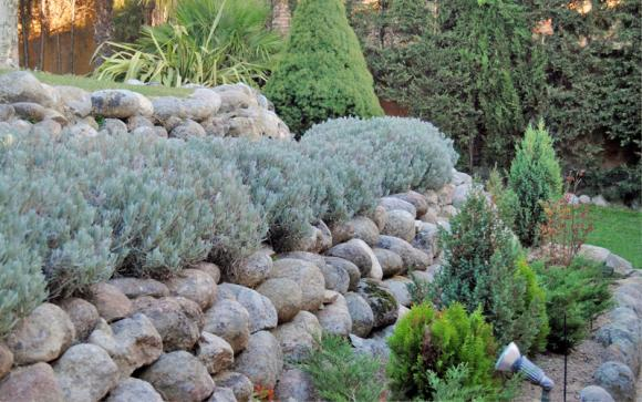 mijardinfacil.com. Detalle jardín unifamiliar